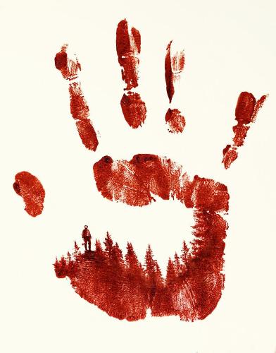 Barkskins Season 1 poster