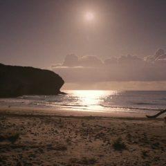 Emerald City Season 1 screenshot 5
