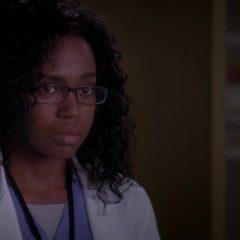 Grey's Anatomy Season 10 screenshot 2