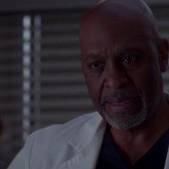 Grey's Anatomy Season 11 screenshot 10