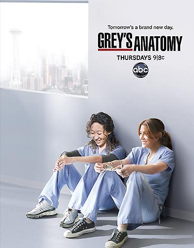 Grey's Anatomy season 8 Poster