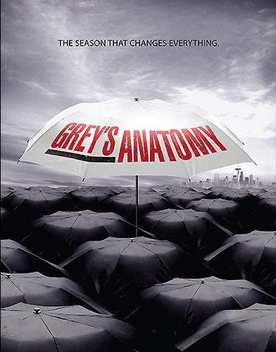Grey's Anatomy season 9 Poster