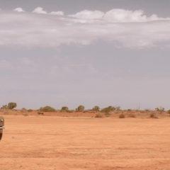 Operation Buffalo Season 1 screenshot 4