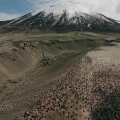 Planet Earth II Season 1 screenshot 1