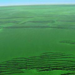 Planet Earth Season 1 screenshot 3