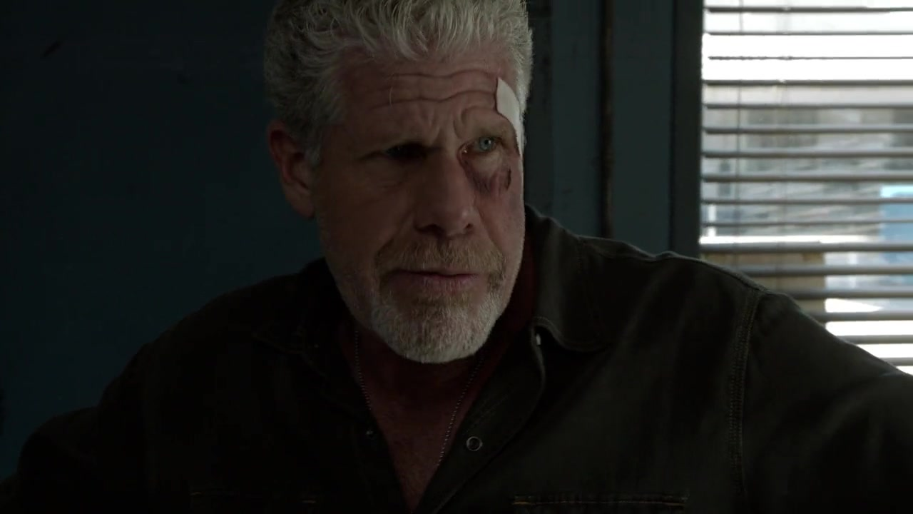 Sons of Anarchy season 1 complete episodes download in HD ...