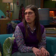 The Big Bang Theory Season 8 screenshot 6