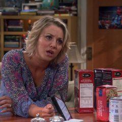 The Big Bang Theory Season 9 screenshot 10