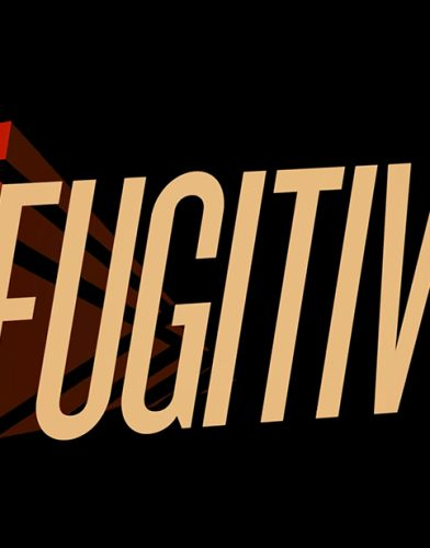 The Fugitive tv series poster
