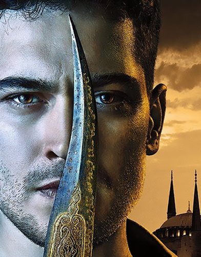 The Protector tv series poster