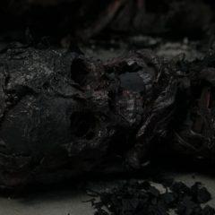 The Walking Dead Season 10 screenshot 3