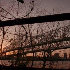 The Originals Season 4 screenshot 3