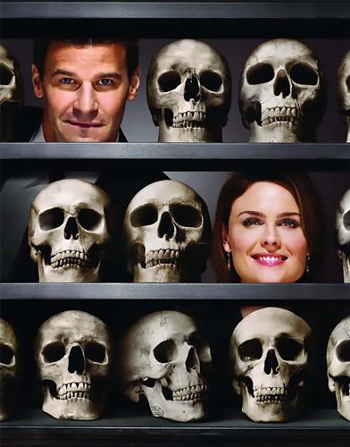 Bones Season 4 poster