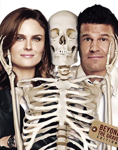 Bones Season 5 poster