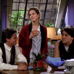 Friends Season 1 screenshot 3