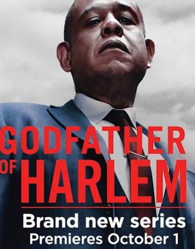 Godfather of Harlem tv series poster