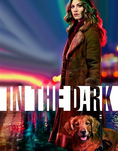 In the Dark Season 1 poster