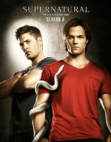Supernatural Season 6 Poster